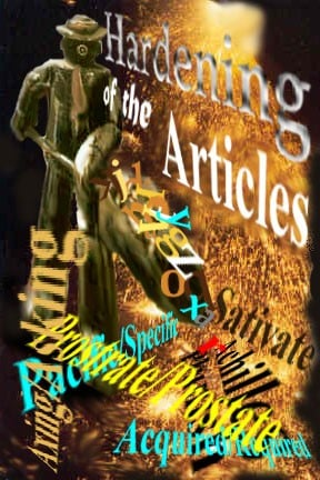 Shannon Kernaghan Hardening-of-the-Articles_image Hardening of the Articles Family Humor Memories