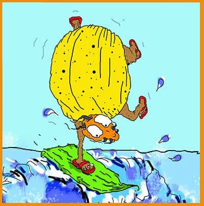 Shannon Kernaghan Surf-bug400 Catch the Wave! Humor Lifestyle Travel  ladybugs infestation good luck