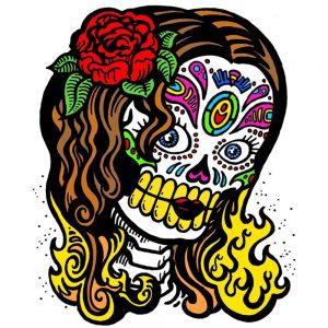 Shannon Kernaghan skull-300x300 More Stories